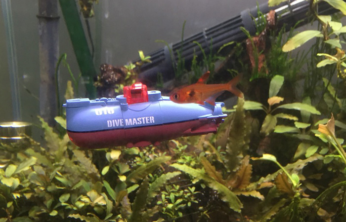 RC HOBBY Blog A very interesting RC Mini submarine for your aquarium. aquarium Toys Introduction Preview Article.