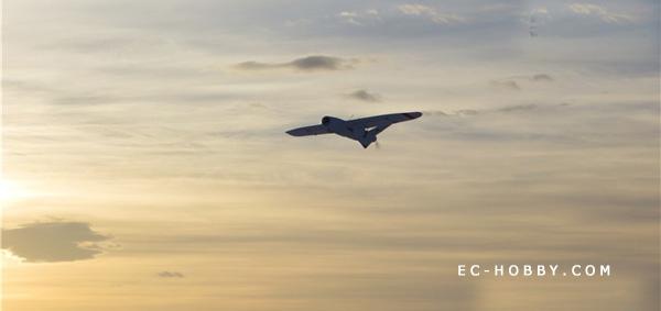 Talon FPV/UAV Platform Electric RC model Airplanes Kits